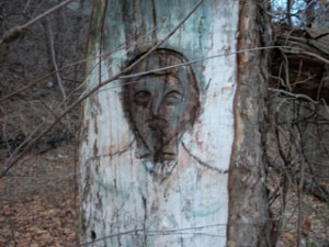 Art is carved into the bark of tree of the Palisades. (Photo by Darren Tobia)