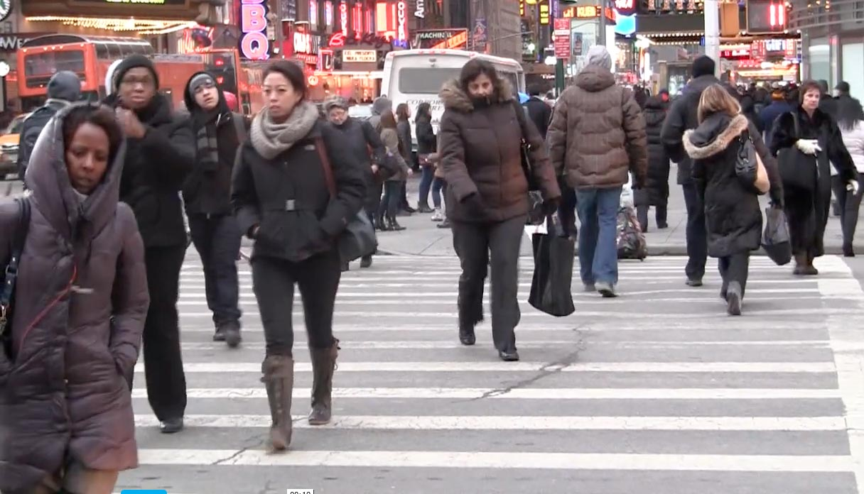 Polar Vortex has found a home in New York City