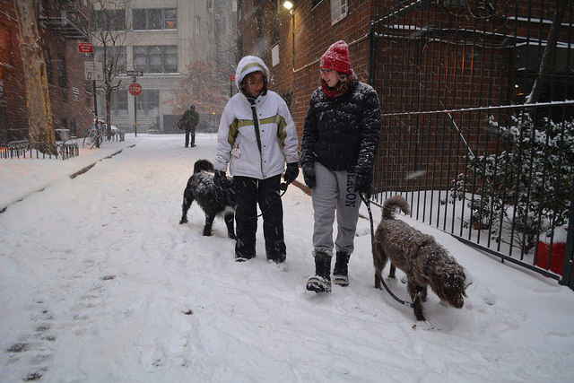 Blizzard of 2015: West Village